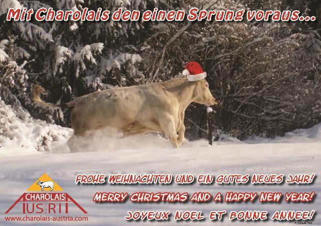 Weihnachten_2013_karte_mail