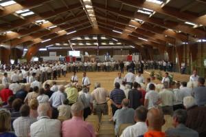 Die 42 Stierkälber in der Endauswahl sorgten für voll gefüllte Zuschauerränge (Quelle: CHA Tröstl)