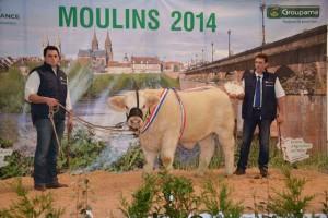 Fotoquelle: Schaukomitee Moulins